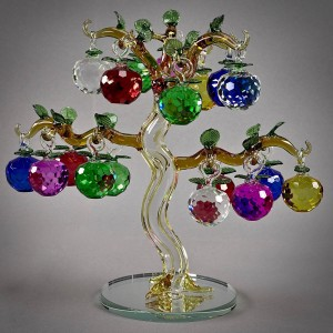 Яблоня 6-ти цветная, 18 больших яблочек на дереве
