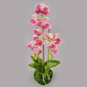 Орхидея искусственная Фаленопсис с корнями и листьями в торфе (на 3 ветки)